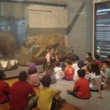 Gabinete de ciencia en el Museo