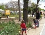 Haciendo un huerto en Agosto con niños en Madrid gratis
