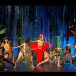 Entradas Teatro musical infantil El Libro de la Selva