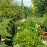 El Bosque encantado jardin botanico en madrid