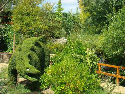 El bosque encantado jardin botanico en madrid para beb s for Carson bosque y jardin
