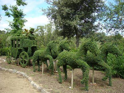 el bosque encantado jardin botanico en madrid para beb s