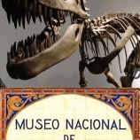 Gabinete de ciencias para niños en Museo de Ciencias Naturales
