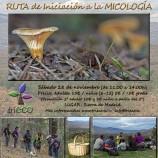 Ruta de Iniciación a la Micología