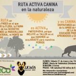 Actividades para niños y perros en Madrid