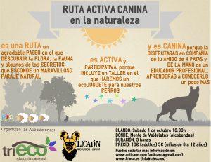 cartel_rutaactivacanina-01-1