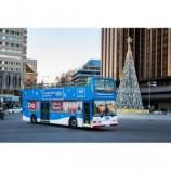 El bus de la navidad naviluz en madrid